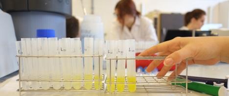 Quality Assurance - Facultat de Química - URV